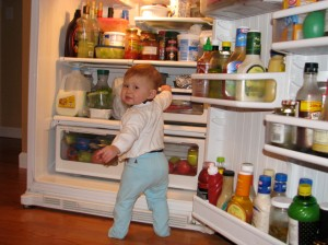 getting onto the fridge (just before she got strawberry syrup all over her)