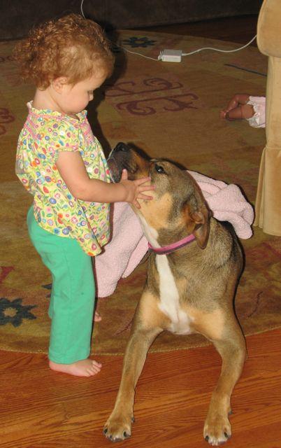 baby is dogs best friend